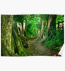 Path to the fairytales Poster
