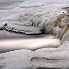 Frozen by Chintsala