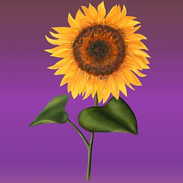 Sunflower on Purple by artlilly
