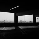 palm trees and parking lots by Rae Stanton