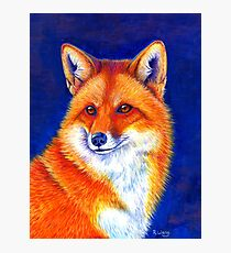 Colorful Red Fox Portrait Photographic Print