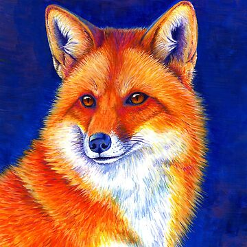 Colorful Red Fox Portrait by lioncrusher
