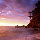 Sunset at Goat Bay, Coromandel by Paul Mercer