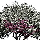 Heart Tree by DesignsByDebQ