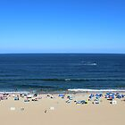 Summer Day at Virginia Beach by Sandra Connelly