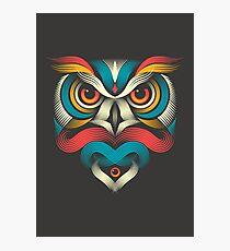 Sowl Photographic Print