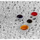 Drops of Colour  by David Wilson