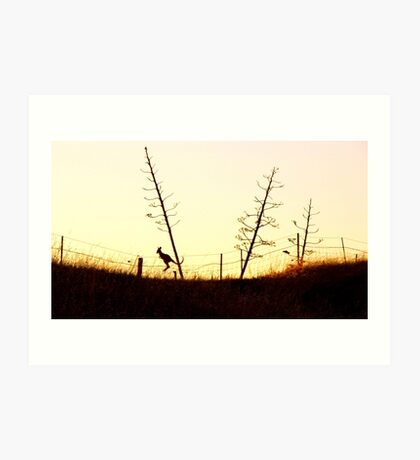 Hopping towards the setting sun Art Print