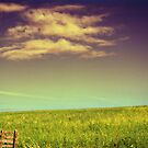Tranquility in cloud and green slope by Silvia Ganora
