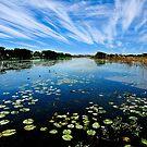 Marlgu billabong, Kimberley Western Australia by Colin White