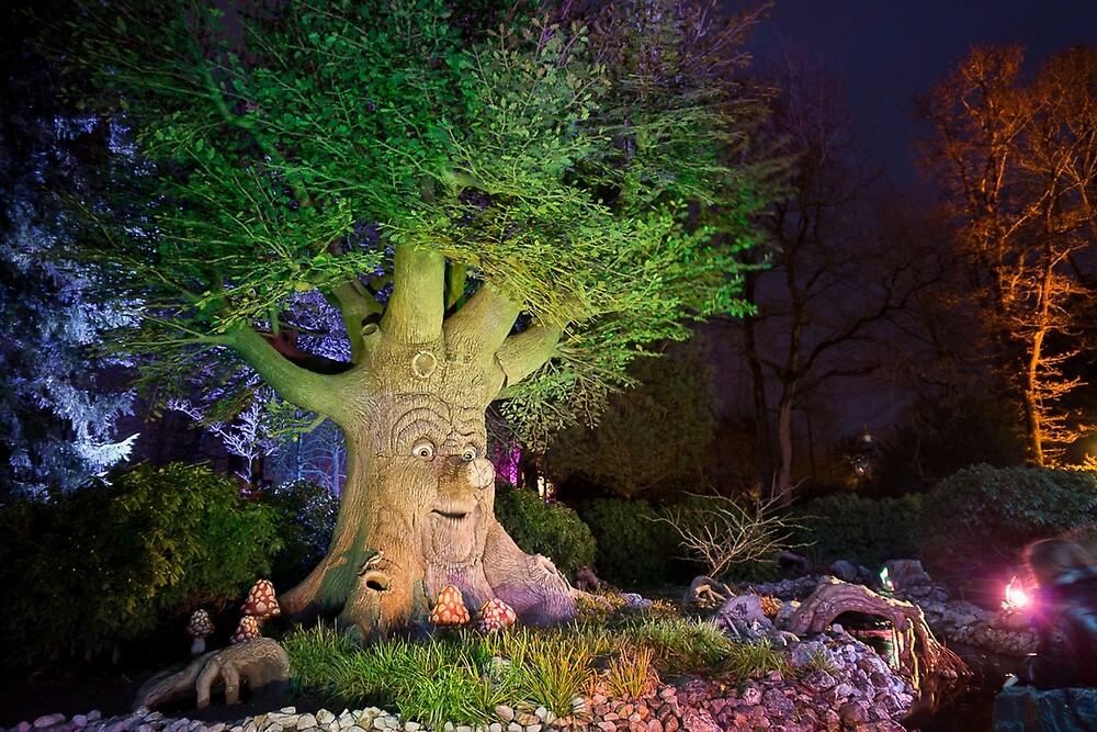 Sprookjesboom by Eftelingmarcel