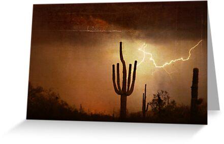 Desert Landscape of the Southwest by Bo Insogna
