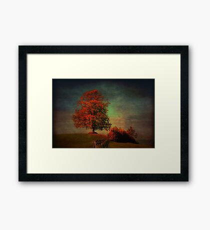 Majestic Linden Berry Tree Framed Print