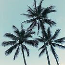 Blue Skies and Tropical Palm Trees by AlexandraStr