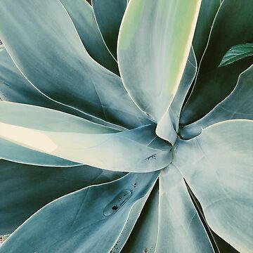 Simple Green Plant Leaves by AlexandraStr