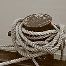Ropes and More Ropes by Lynn  Gibbons