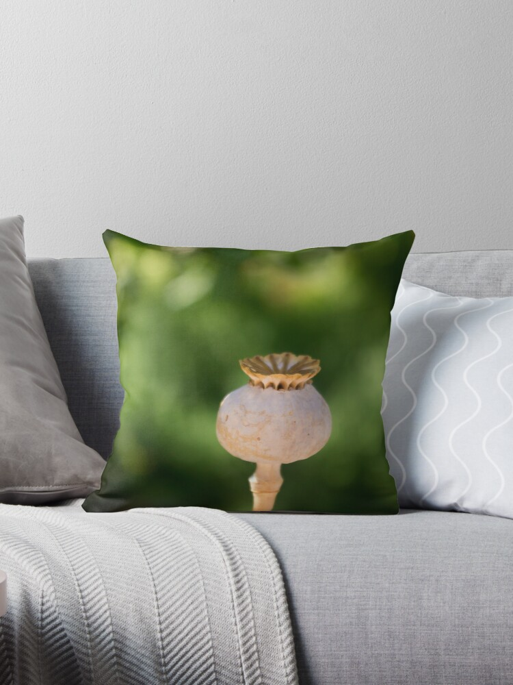 Dried Poppy Seed Pod Throw Pillow By Hollyis Redbubble
