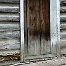 The Old Door by Lynn  Gibbons