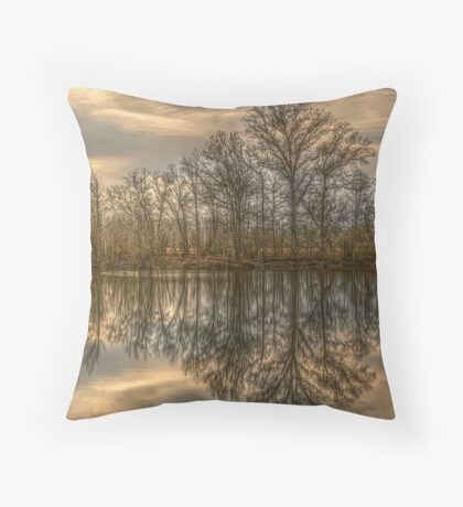 Across The Pond Throw Pillow