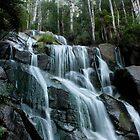 Toorongo Falls Revise by Ian Stevenson