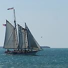 Key West Sailboat (Southern Cross) by DianaTaylor/ JacksonDunes