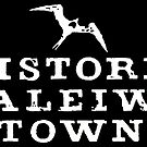 Historic Haleiwa Town WHT by northshoresign