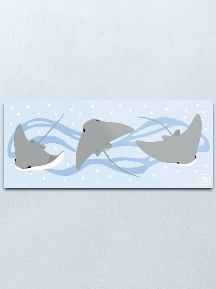 Alternate view of Stingrays - Cownose Ray - Sticker Pack Metal Print