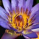 Blue Water Lily - Hoi An, Vietnam by Bev Pascoe