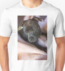 Pure Blue Staffy Unisex T-Shirt