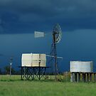 Storm brewing behind the water tanks Wilber Farm by pedroski