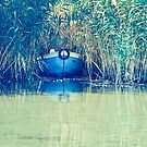 Into the lake by jogogou