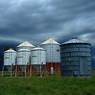 Storm brewing behind Grain Silos on Wilber Farm by pedroski