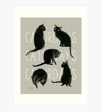 Lámina artística Caturdays - Gato Negro