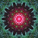 Flower and leaf mandala  by medley