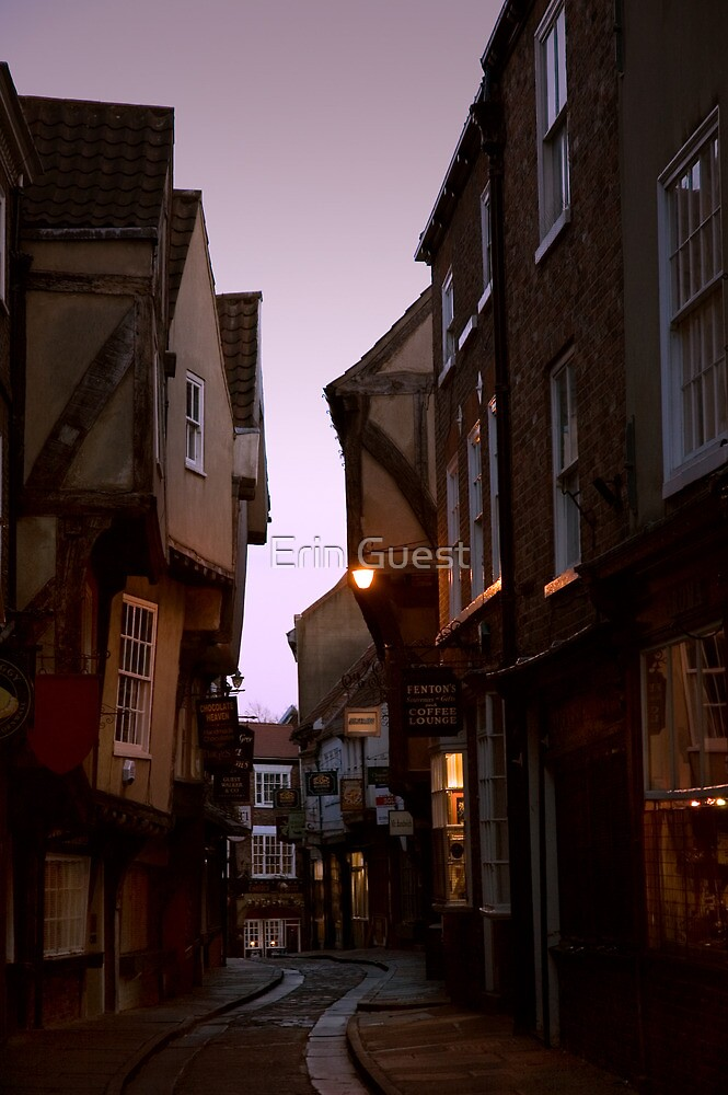 The Shambles - York by Erin Guest