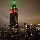 Empire State Building NYE 2009 by Gayan Benedict