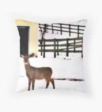 Look Who Came to My Window! Throw Pillow