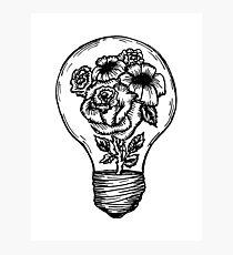 Lámina fotográfica bombilla de la flor