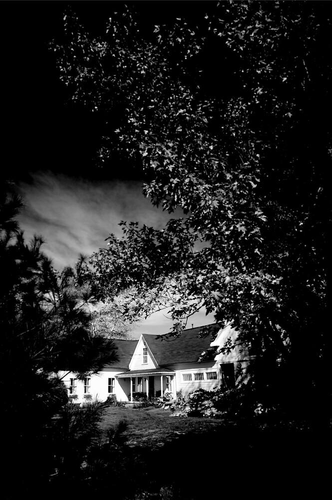 MAINE HOUSE, NEW ENGLAND USA by BYRON