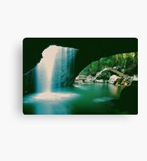 NATURES UTMOST! Canvas Print