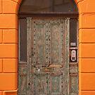 Mottled door by Gary Gurr