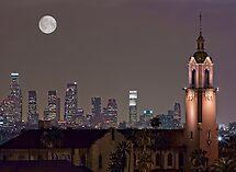 Saviour of the City by Ann J. Sagel