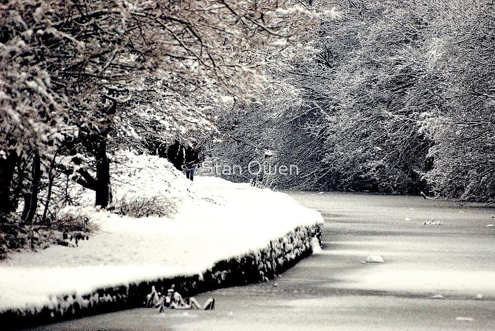 A Snowy Walk by Stan Owen