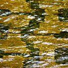 Underwater Masonry by Lynn Wiles
