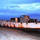 rustic Wreck Botany Bay by Tina Wright