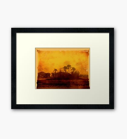 Golden Land Framed Print
