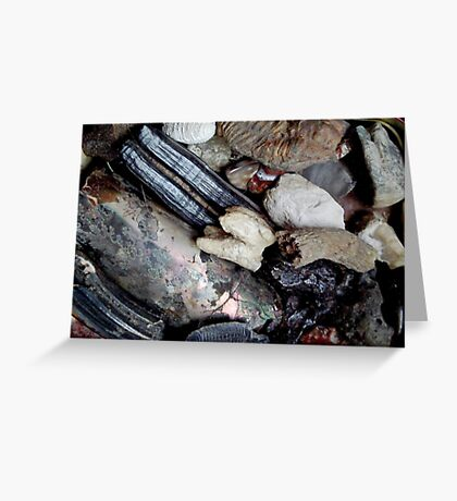 Needful Things - Fossils Greeting Card