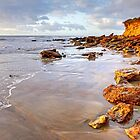 Anglesea Morning by Harry Oldmeadow