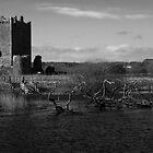 Threave Castle by bilyana