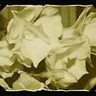 Old Flowers Framed by PhoenixArt